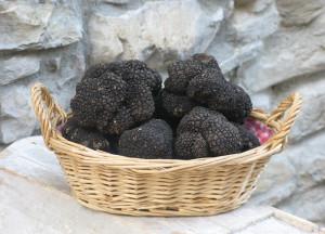 tartufo-nero-di-fragno