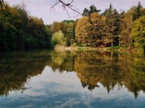All'interno del Parco dei boschi di Carrega