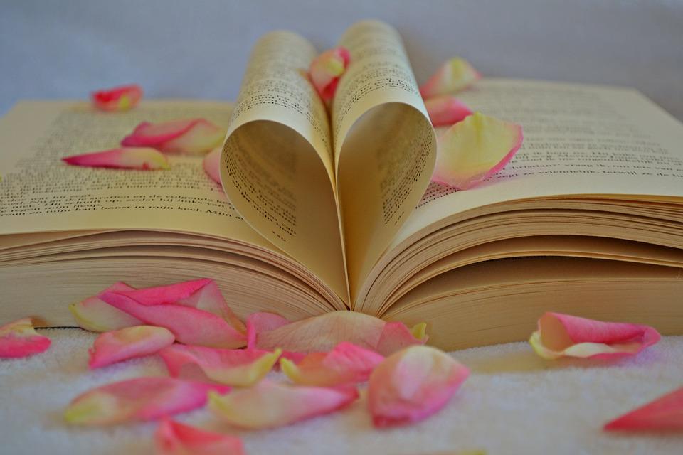 libro san valentino
