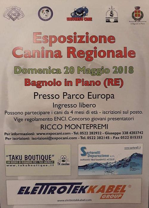 Expocani Calendario.Esposizione Canina Regionale Pro Loco Emilia Romagna Unpli