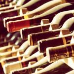 I vini dell'Emilia Romagna