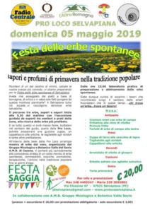 Festa delle Erbe Spontanee @ Selvapiana FC   Selvapiana   Emilia-Romagna   Italia