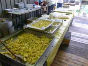 19° Sagra della Patata @ Sant'Alberto RA