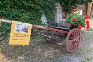Festa del Borgo @ Cereglio (BO) | Cereglio | Emilia-Romagna | Italia