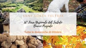 Fiera Nazionale del Tartufo Bianco Pregiato @ Sant'Agata Feltria (RN)